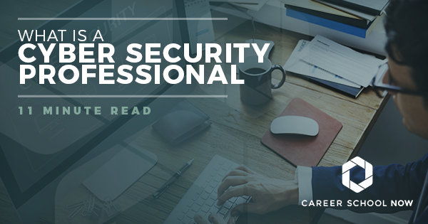 What Is A Cyber Security Professional