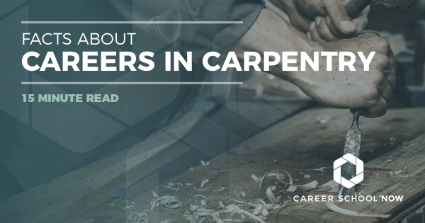 Becoming a Carpenter: Carpentry Career Training, Jobs & Salary Info
