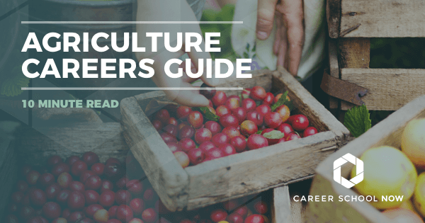 Different Agriculture Careers: Find Out About Education, Jobs & Salary