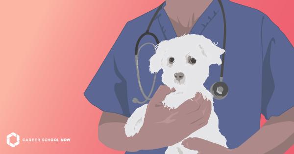 Becoming a Veterinary Technician: Vet Tech Career Information