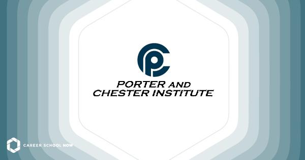 Porter & Chester Institute: Partner School Focus
