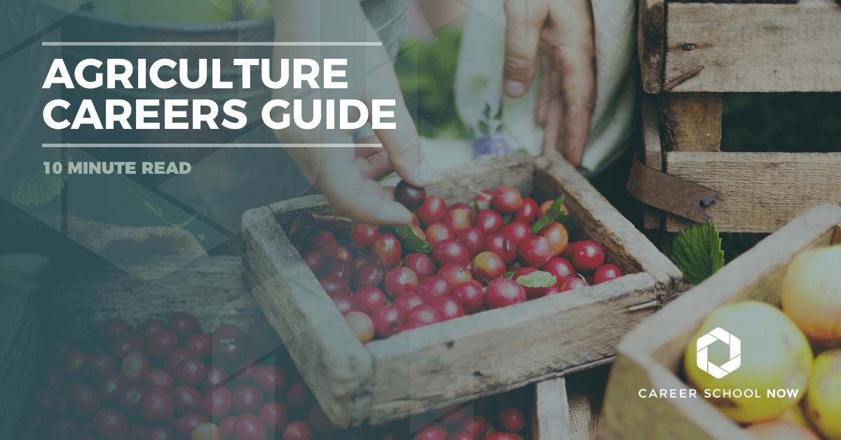 Agriculture career guide--all the different types of careers in the industry of agriculture