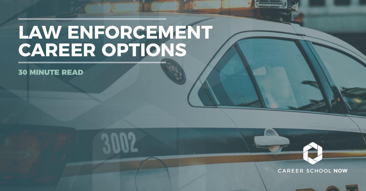 law enforcement career option