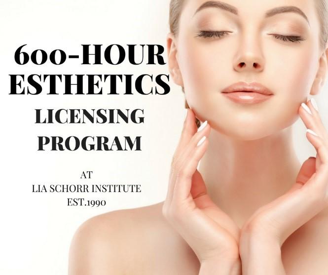 The Lia Schorr Institute of Cosmetic Skin Care Training, Inc